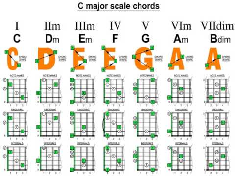 the bass guitar scale manual