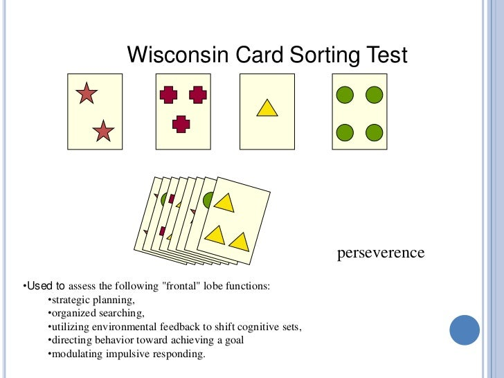 wisconsin card sorting test manual