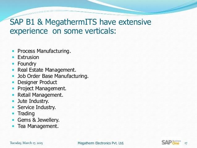 sap business one training manual