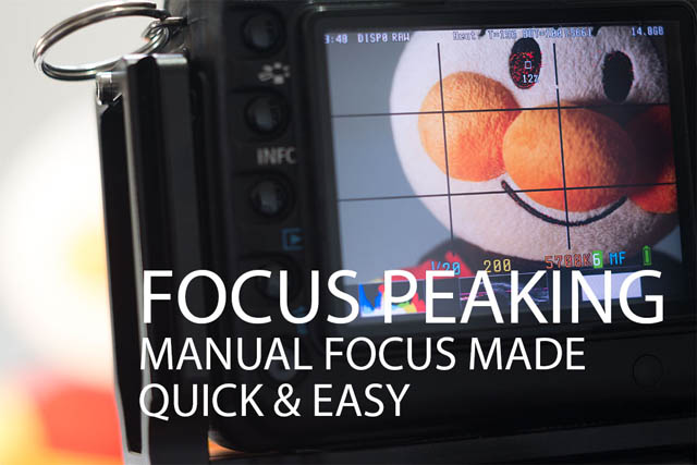 how to use manual focus