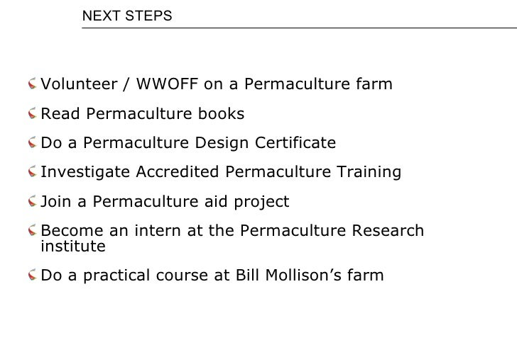 bill mollison permaculture a designers manual pdf