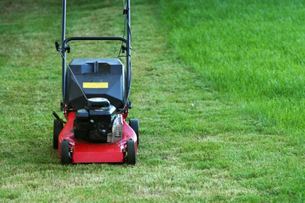 craftsman gcv160 lawn mower manual