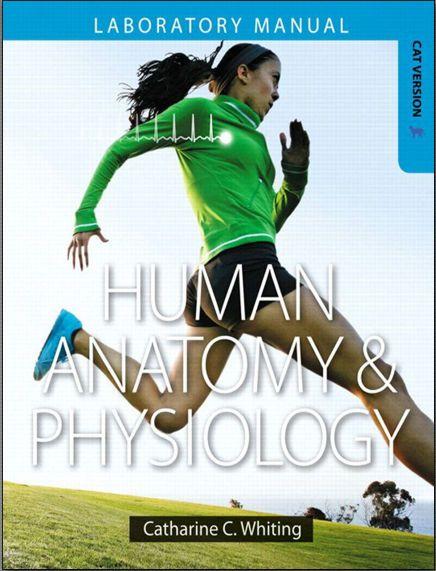 human anatomy and physiology lab manual main version
