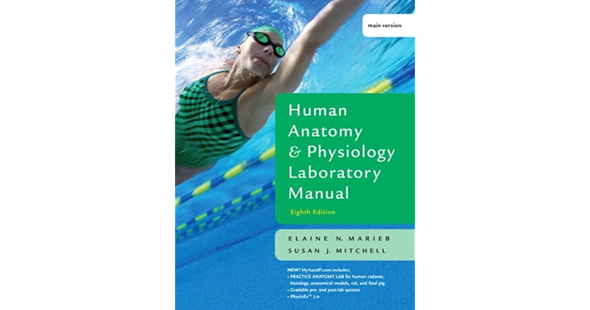 human anatomy and physiology lab manual marieb