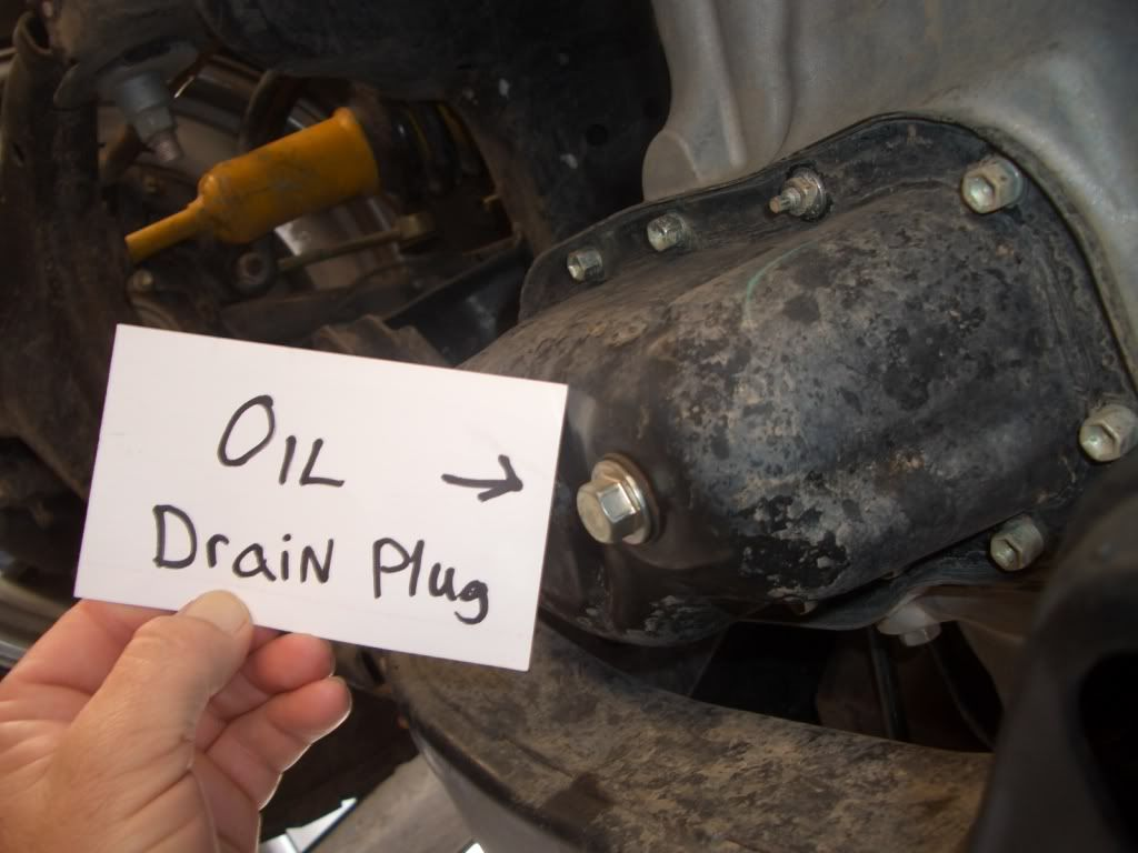where do you put gear oil in a manual transmission